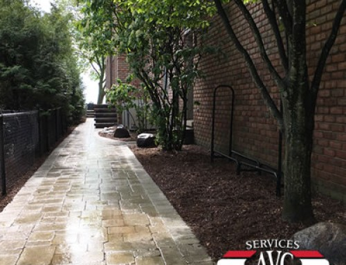 Grosse Pointe Shores, MI:  4 Practical Reasons to Get a Brick Paver Walkway